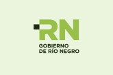RIO NEGRO – Bonificaciones de hasta un 40% para el Pago Anual 2015 de los impuestos Automotor e Inmobiliario